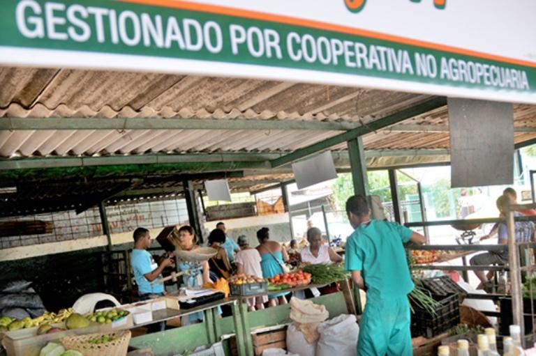 """Asumir que en Cuba el Estado es """"fuerte"""" simplemente porque mantiene un entramado empresarial grande y costoso, no tiene asidero en los datos de la realidad."""